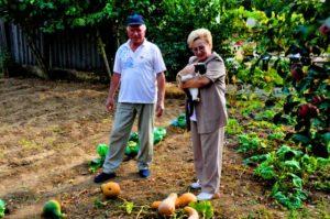 Налог на садовый участок для пенсионеров в 2016-2017 году