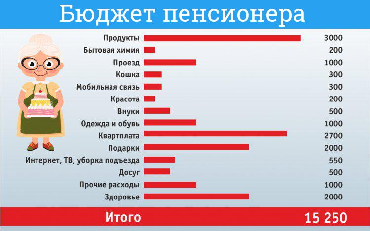 Бюджет российского пенсионера