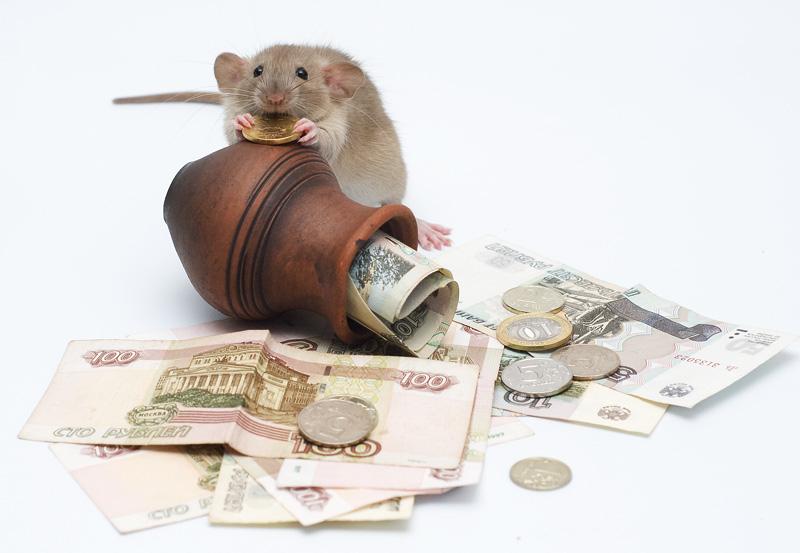 Как откладывать деньги с зарплаты 30 тысяч?