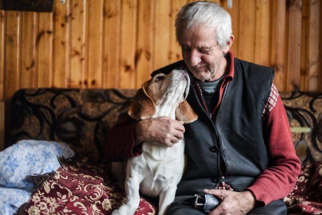 Что можно получить от соцзащиты пенсионерам