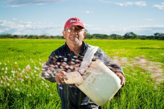 Надбавка к пенсии за работу в сельском хозяйстве